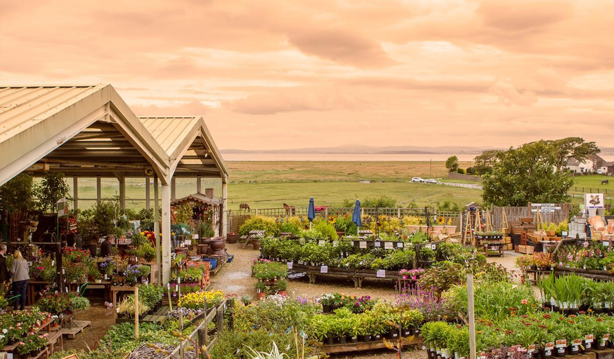 Bay View Garden Centre & Restaurant