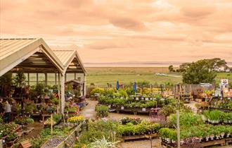Bay View Garden Centre