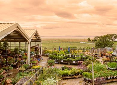 Bay View Garden Centre & Restaurant
