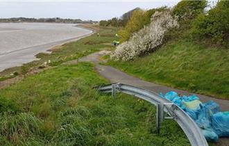 Estuary clean