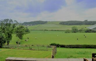 Lodge View Cottages