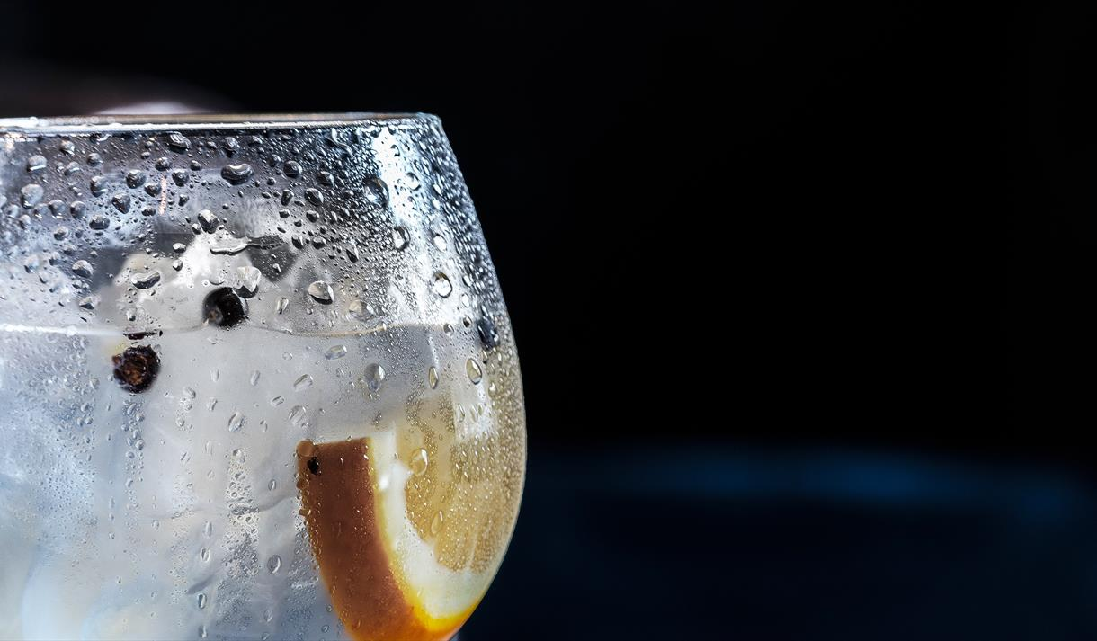 Craft Gin Tasting (Preston)