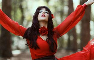 Kate Bush-Ka: Tribute to Kate Bush