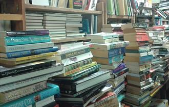 A collection of assorted books.