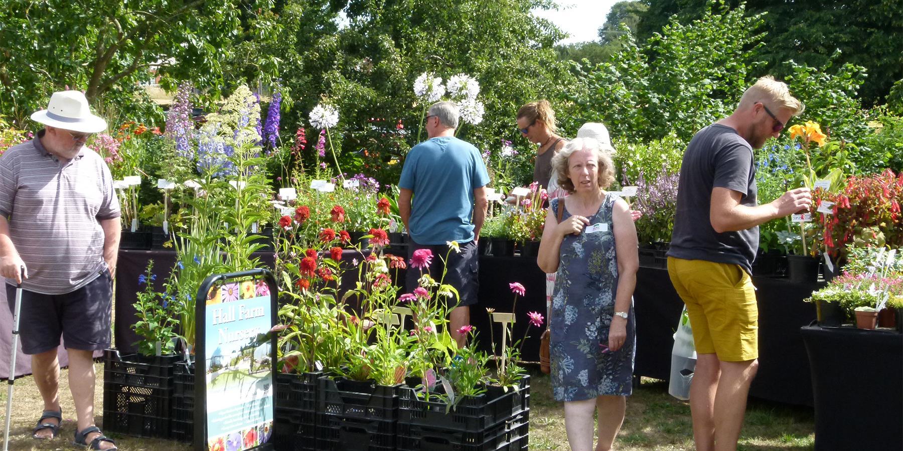 Summer Plant Hunters' Fair at the 1620's House & Garden, Donington Le Heath