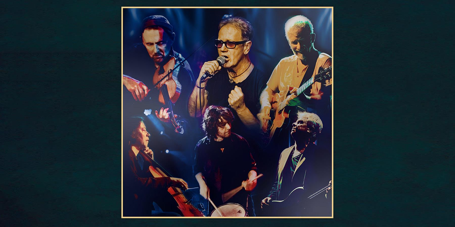 Oysterband Live