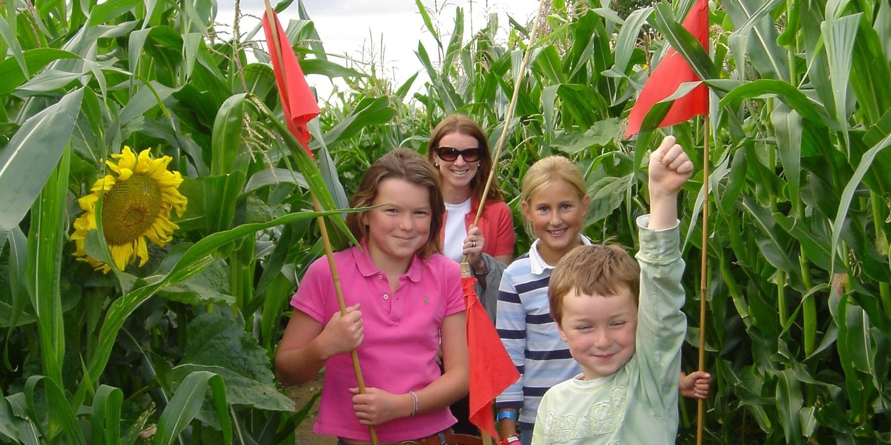 Family walking through maze