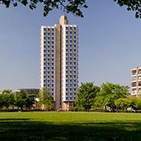 Three Campus Buildings Under A Blue Sky