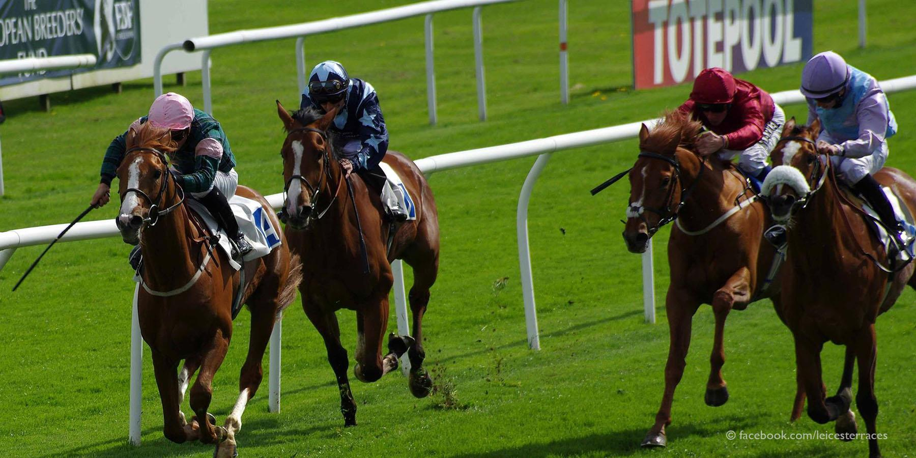 Leicester Racecourse - Sports and recreation in Leicester