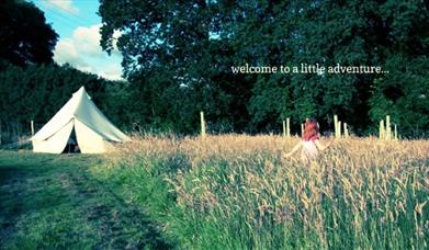 Secret Campsite, Lewes
