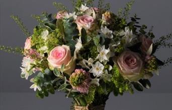 Poison Ivy Florist