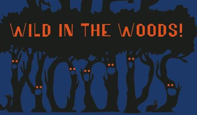 Wild in the Woods poster