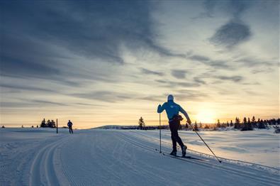 Cross-country skiing at Sjusjøen