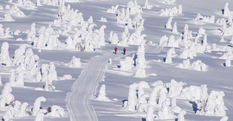 Skiføre Lillehammer