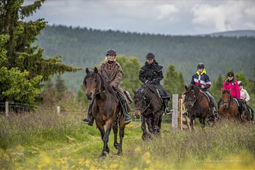 Gruppe koser seg på ridetur i naturen | Venabu Fjellhotell