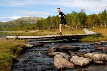 Furusjøen Rundt-run