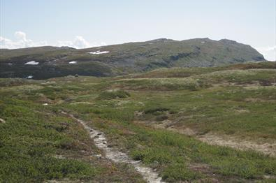Kvitfjell - Storfjellet (38,6 km)