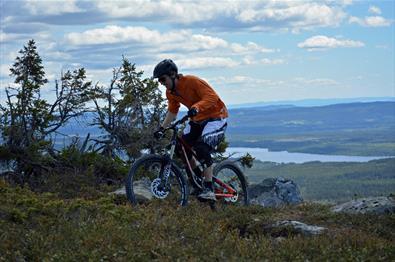 Terrengsyklist klatrer opp stien til Brannytta.