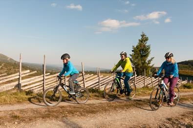 3 bicyclist cycling alongside a norwegian style fence called skigard
