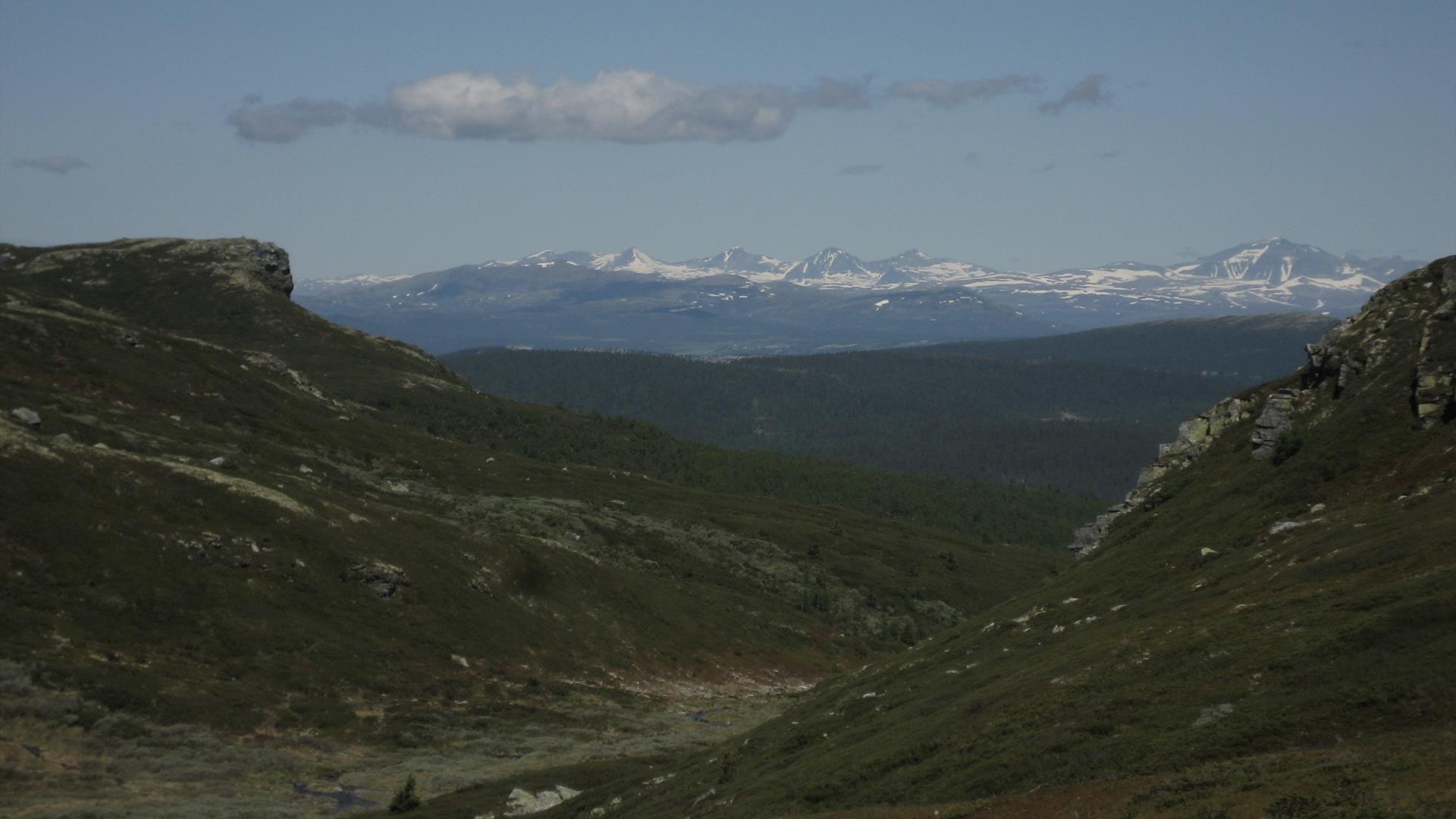 Utsikt mot Skarbua