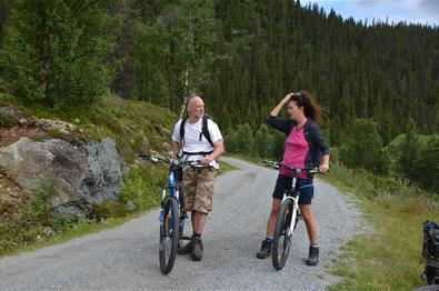 Sykling med Discover nature Norway