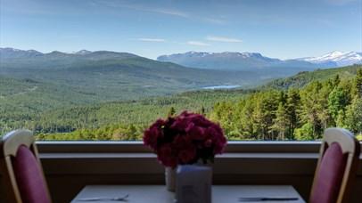 A view, Dalseter Høyfjellshotell