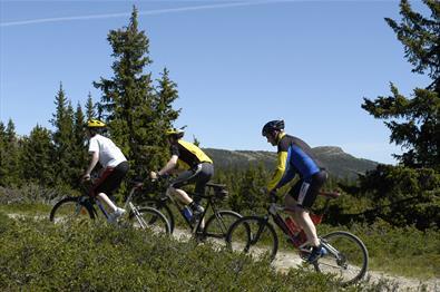 Radfahren in Kvitfjell
