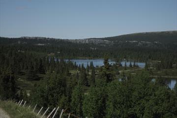 Utsikt over fjellvann