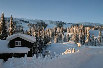Winter Gudbrandsgard Hyttegrend