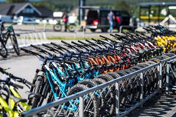 Bike rental   Hafjell Bike Park