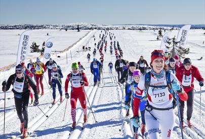 Birkebeinerrennet (Birkebeiner Ski Race) 54 km