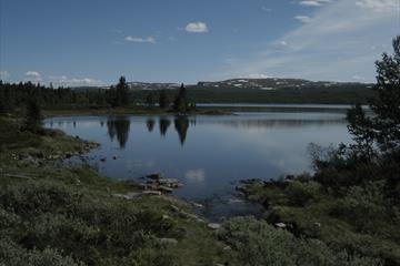 Kvitfjell-Digeråsrunden (28 km)