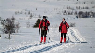 Crosscountry skiing at Venabu