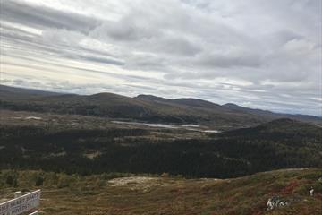 Utsikt fra Ormtjernskampen