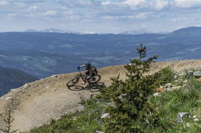 Downhill Hafjell Bike Park