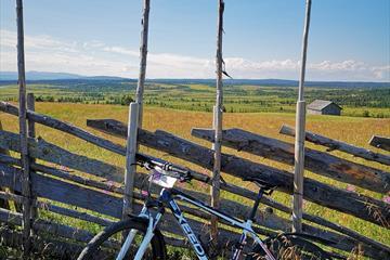 Bicycle rental   Pellestova Hotell