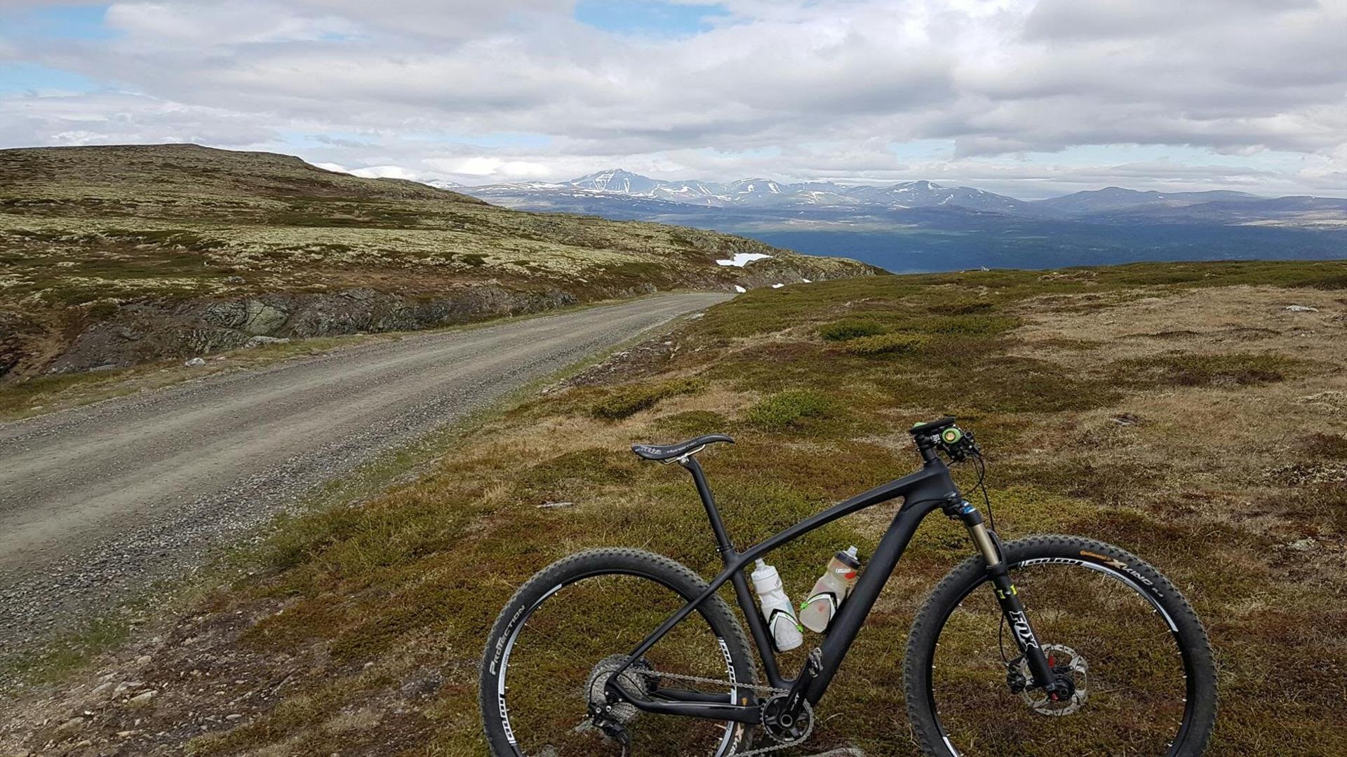 A bike parked alongside the mountain road.