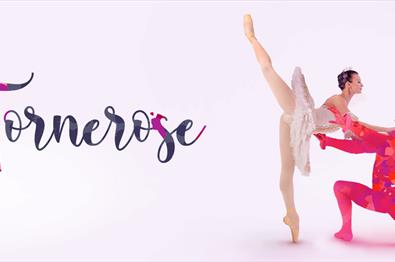 Tornerose med Moscow Ballet Theater