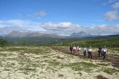 Hiking in Rondane National Park