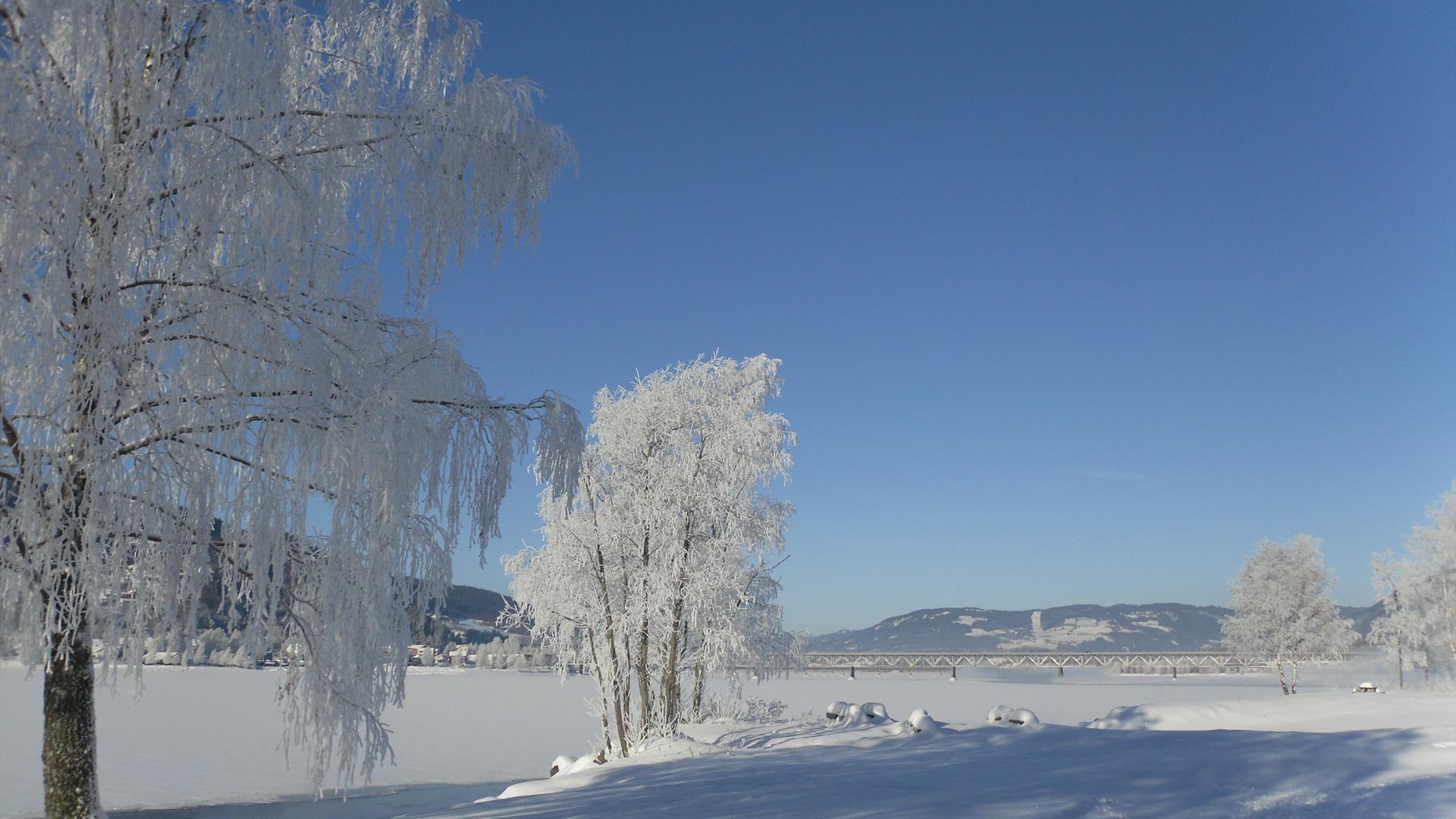Vinter langs Mjøsa