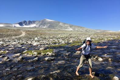 Turgåer fkrysser ei elv med Snøhetta i bakgrunn | Venabu Fjellhotell