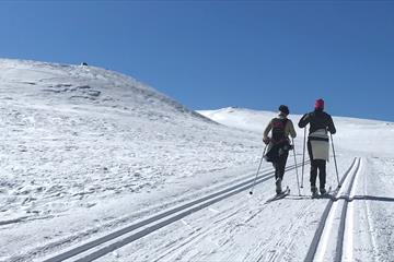Ut på ski mot Spåtind
