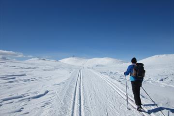 Spåtind Fjellstue – Lundssætrene – Lenningen – Spåtindtoppen – Krokhølen – Spåtind Fjellstue 45 km