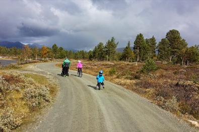Eine Familie auf Tour entlang einer unbefestigten Straße