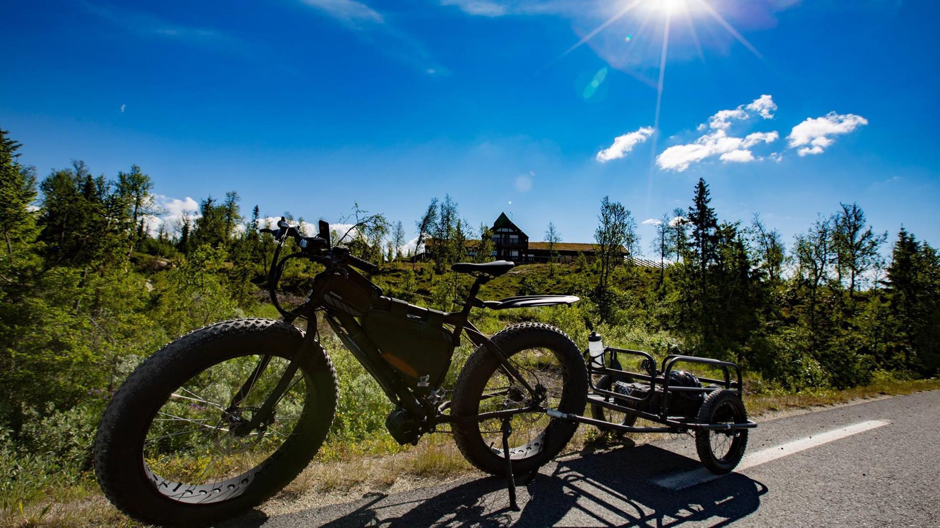 Biking from Synnfjellporten