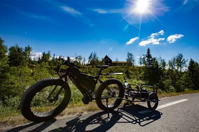 Sykkeltur fra Synnfjellporten