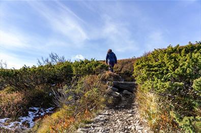 Djuptjernskampen 1.325 m ü. d. M