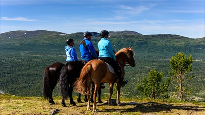 View of the horseback beyond the Espedalen