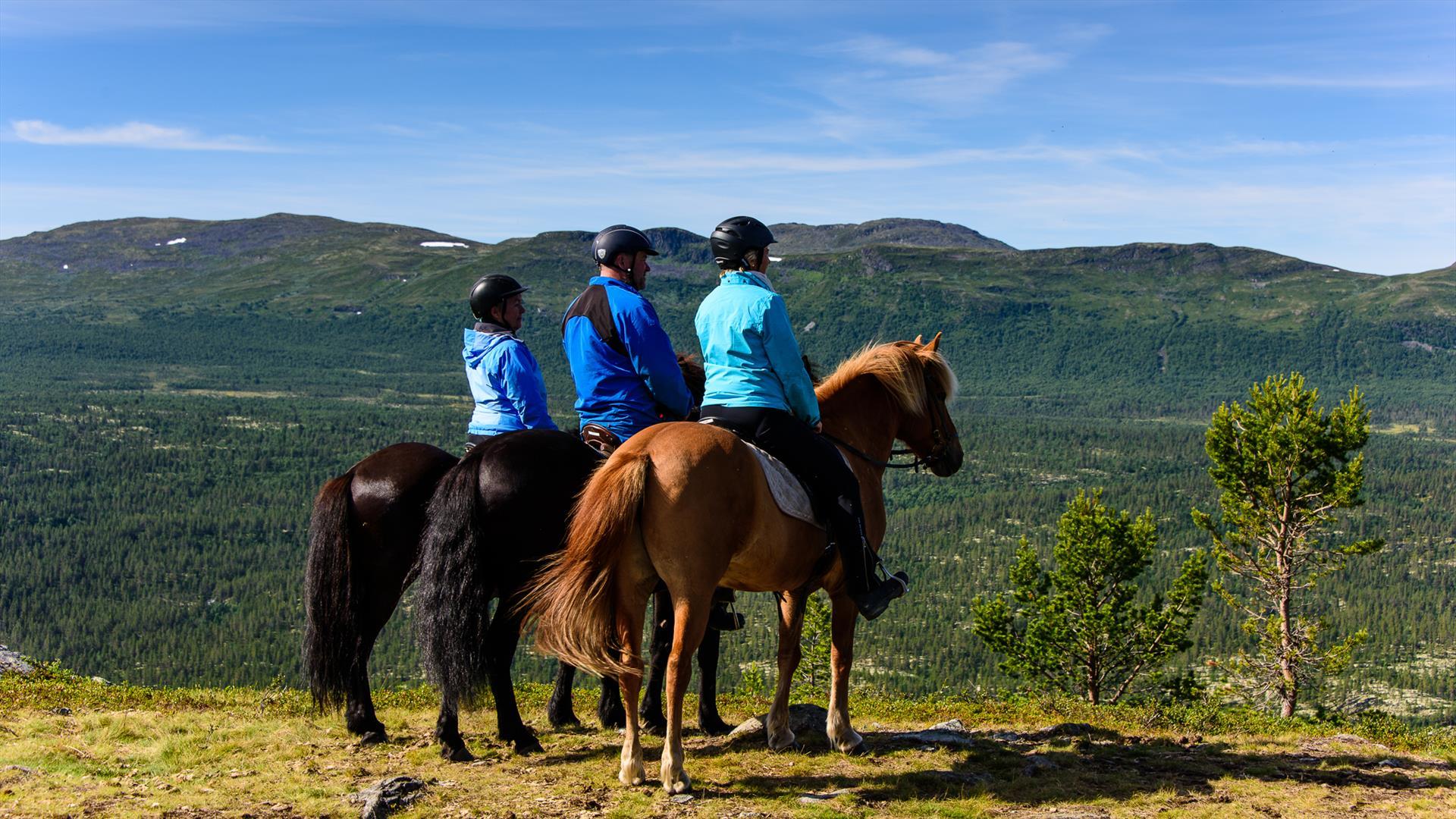 Utsikt fra hesteryggen utover Espedalen