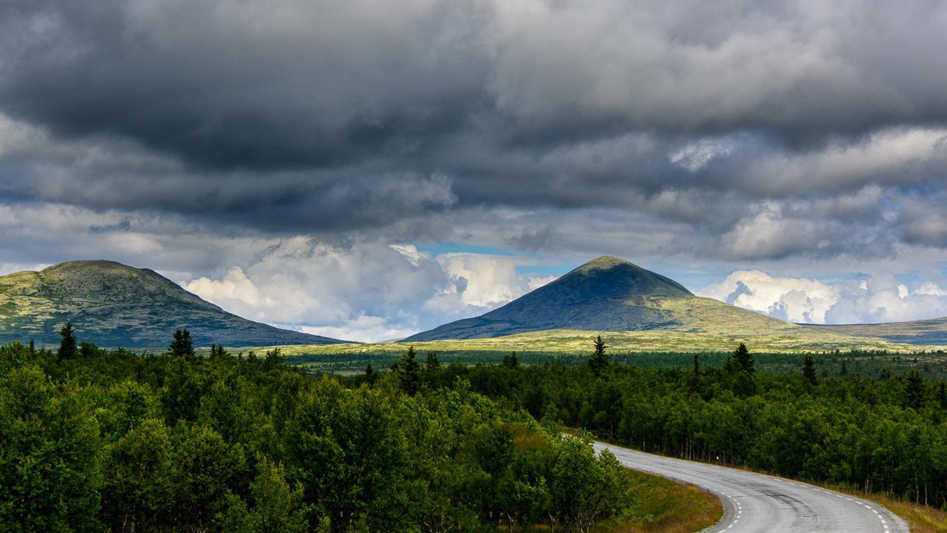 Norwegian Scenic Routes |Rondane